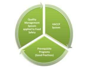 food safety management system process flow- quality system, HACCP and Prerequisite programs